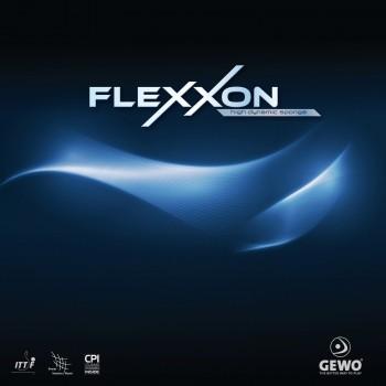 Flexxon